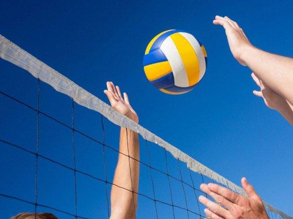 Волейбол и баскетбол