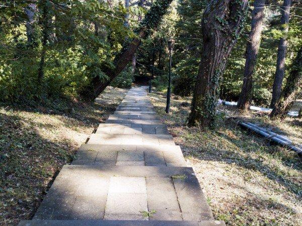 Парк санатория и набережная