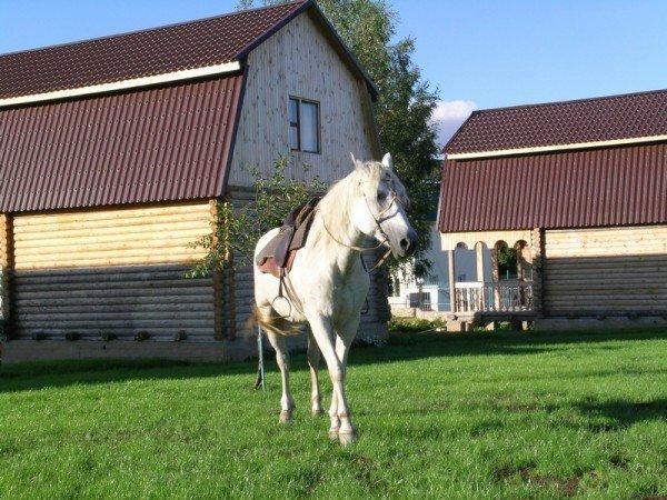 Катание на лошадях и прогулки в карете