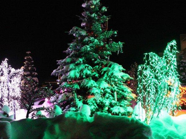Новогодние праздники в Олимпе