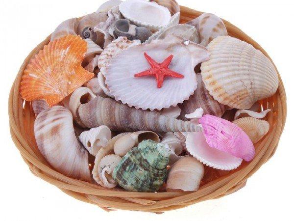 Мини-маркеты и сувенирные лавки