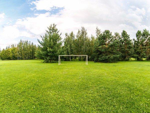 Спортивные площадки