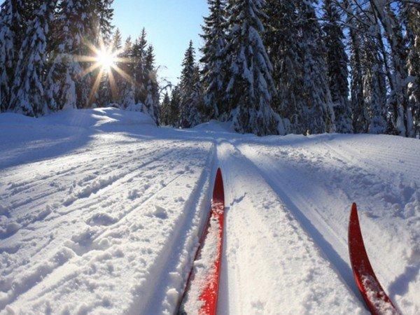 Каток и лыжня