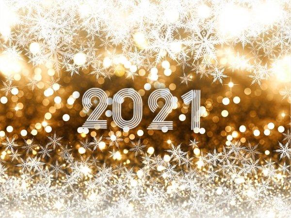 Скидки на раннее бронирование Нового года 2021!