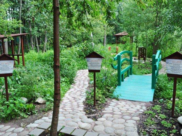 Сад «Кайдзен»