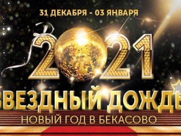 Новый год 2021 «Звездный дождь»