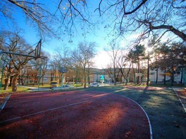 Волейбольная и баскетбольная площадки