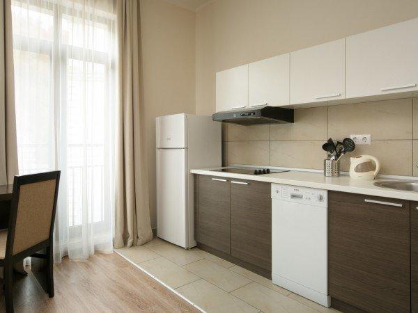 Апартаменты Люкс с кухней-гостиной