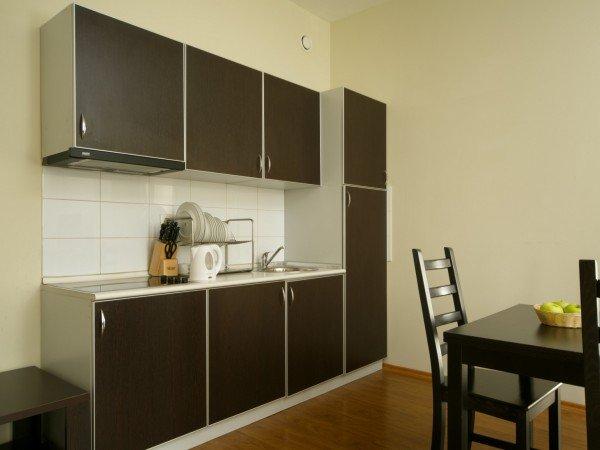 Апартаменты с кухней-гостиной