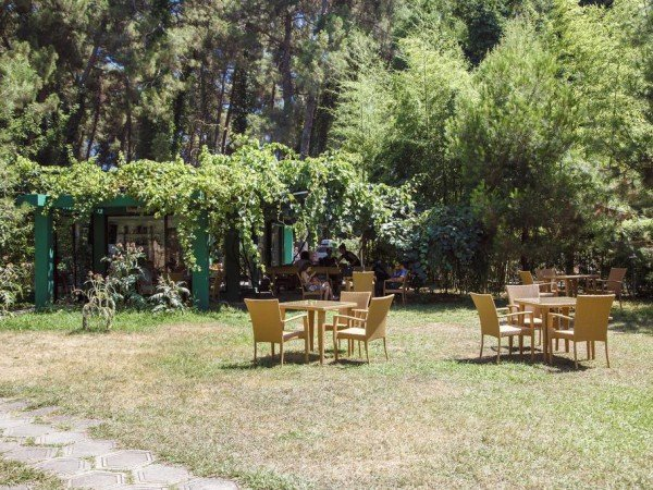 Кафе «Апсара»