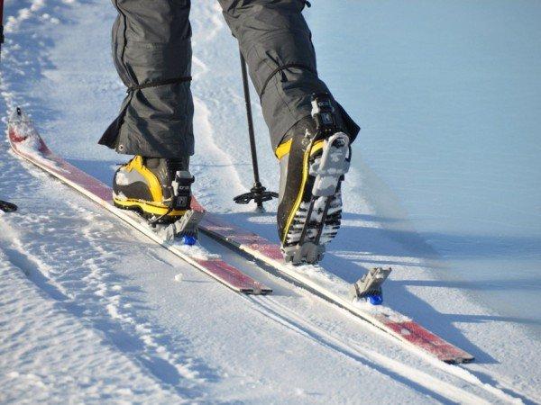 Лыжня для беговых лыж