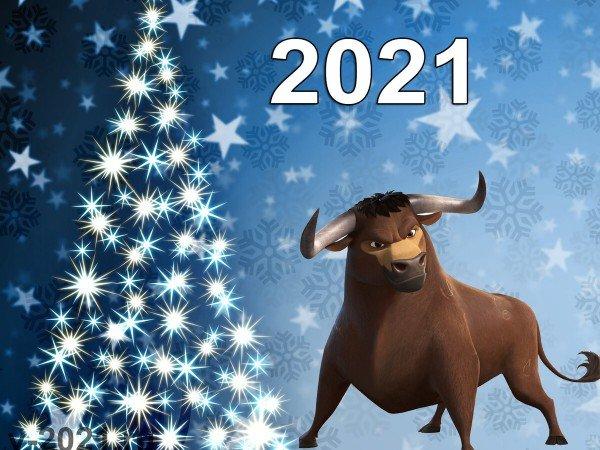 Новогодние праздники 2021 года !