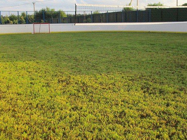 Хоккейно-футбольная площадка