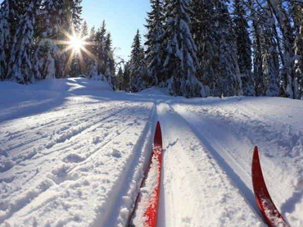 Каток и лыжная база