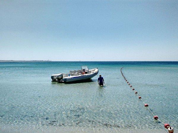 Морские прогулки