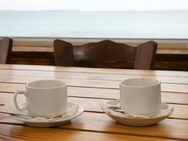 Кафе «Тортуга»