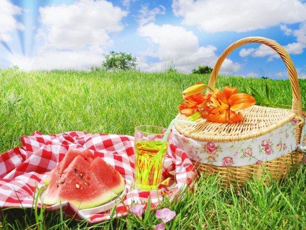 Поляны для пикника