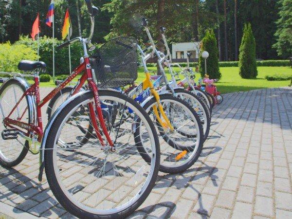 Велосипеды и роликовые коньки